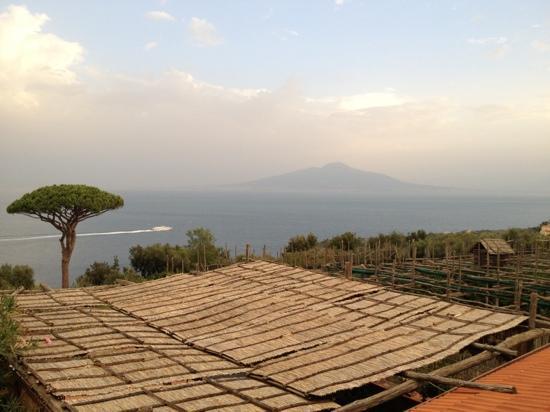 """Agriturismo """"Il Giardino di Vigliano"""": View from room"""