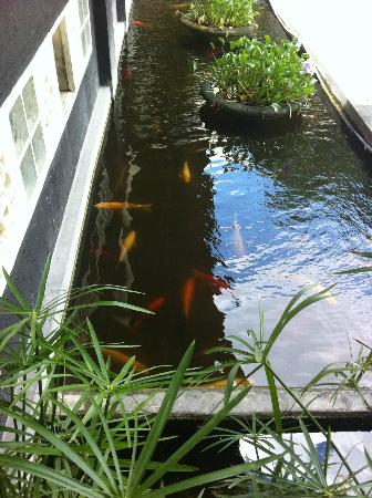 Mutiara Bali Boutique Resort & Villas: Giant gold fish at the entrance