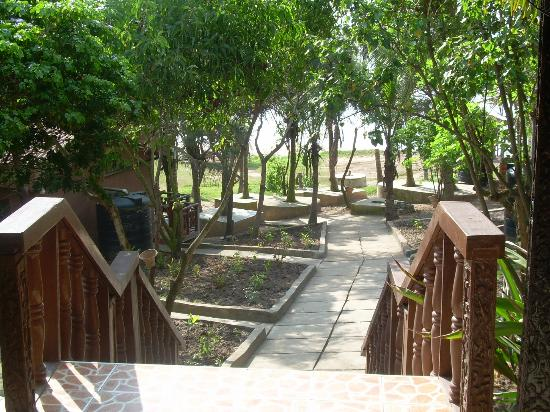 Afia Beach Hotel : L'escalier qui mène à la plage