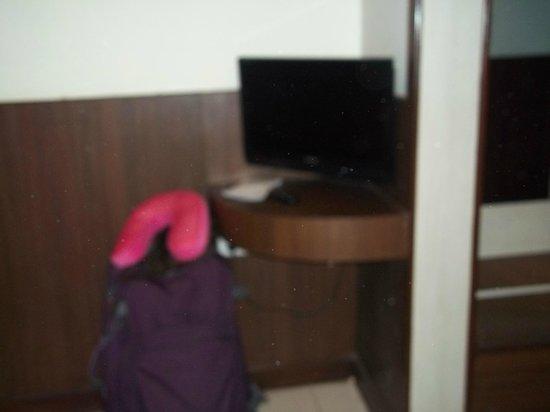 Sheetal Regency Hotel: tv