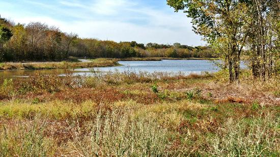 Oak Point Park & Nature Preserve : Oak Point and Bob Woodruff Parks