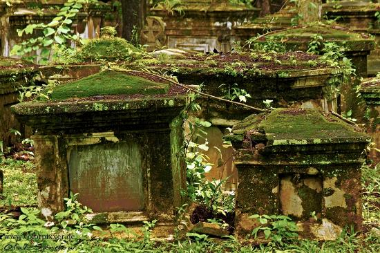 Old Protestant Cemetery : Protestant Cemetery