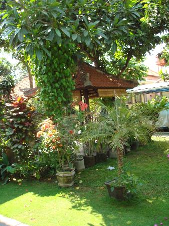 Warung Coco Guesthouse & Bungalows 사진