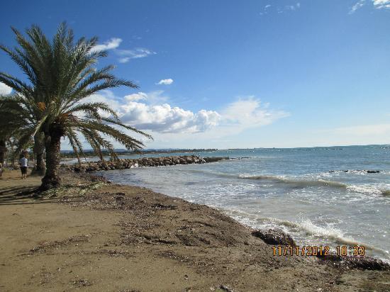 Hotel Louis Phaethon Beach Paphos Cyprus