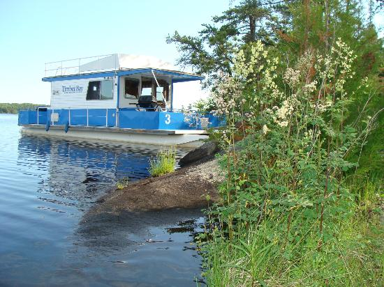 Timber Bay Lodge and Houseboats: Peninsula camp