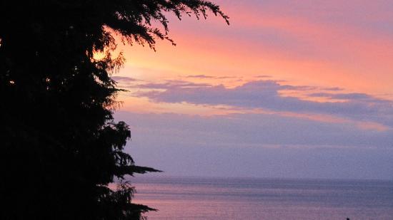 Barbara Piran Beach Hotel & Spa: Ausblick vom Zimmer