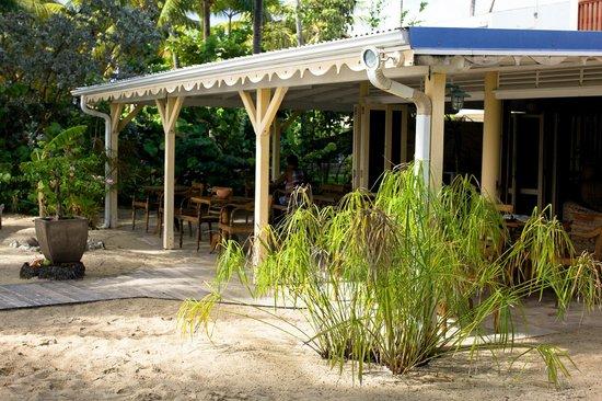Hotel Le Diwali : Le jardin, le sable, les arbres. Douceur de vivre.