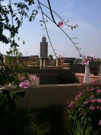 Riad lyla Marrakech: Rooftop Views