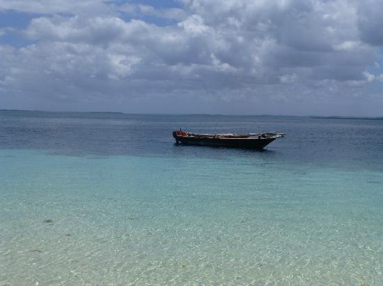 Fundu Lagoon: Misali island (diving/snorkelling)