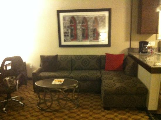Residence Inn Boston Logan Airport/Chelsea: Living room
