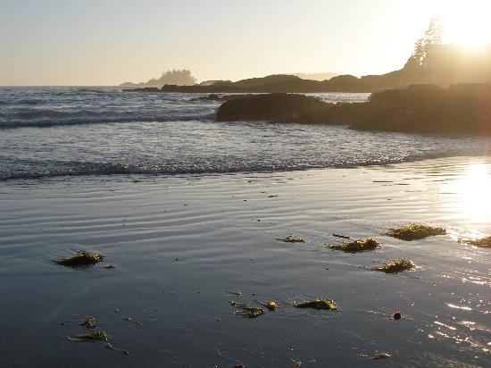 Pacific Rim National Park : Chesterman Beach