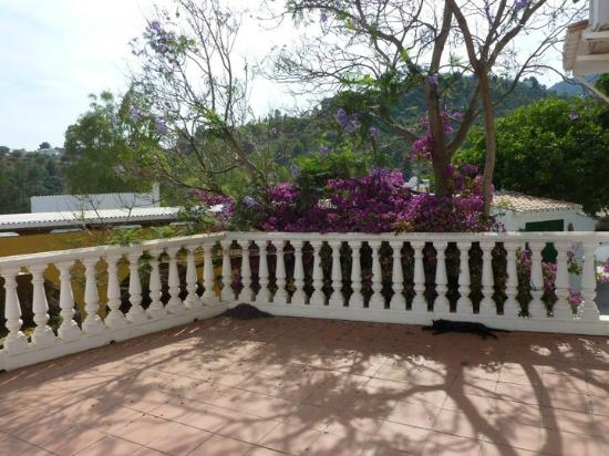 Rancho La Paz: Terrasse