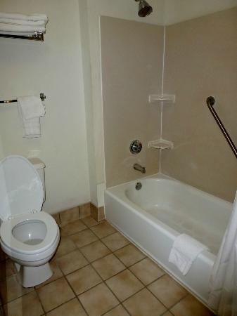 Baymont Inn & Suites Mason : Bathroom in Room 328