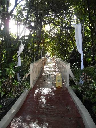 BlueBay Villas Doradas Adults Only: bridge to the beach