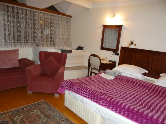 Ada Hotel Istanbul: Apartamento