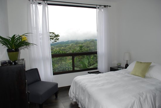 The Guest Suites at Manana Madera Coffee Estate: The view from winder at Manana Madera