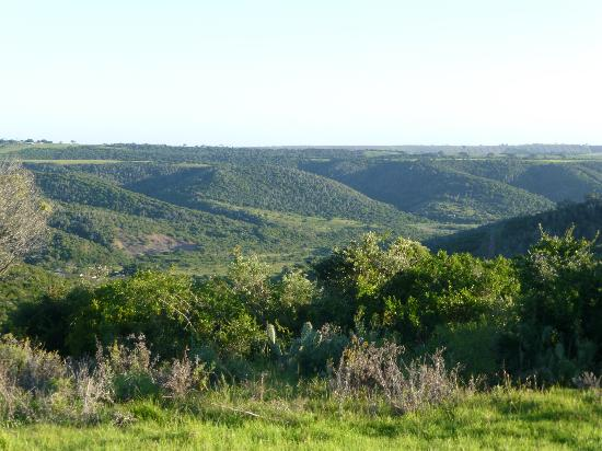 Kariega Game Reserve: some of the views
