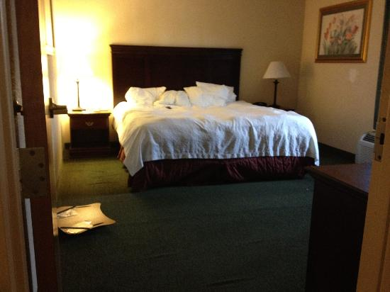 Hampton Inn Manheim: We slept on top of the comforter because we didn't want to know what was under it