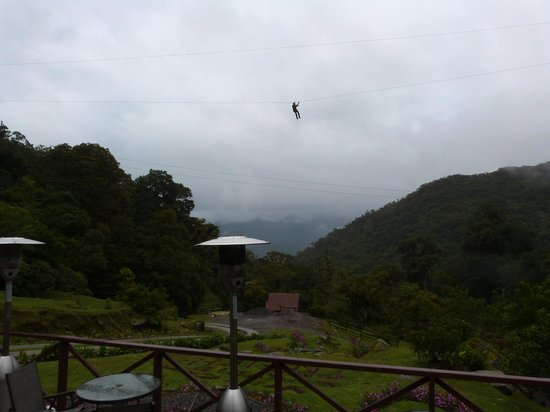 The Guest Suites at Manana Madera Coffee Estate: zipline