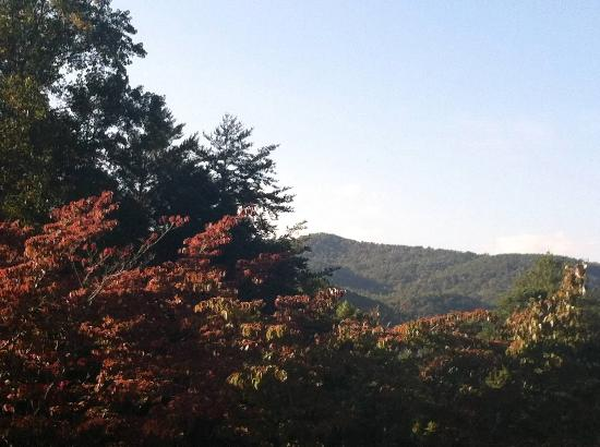 Unicoi State Park & Lodge: View from Unicoi State Park parking lot