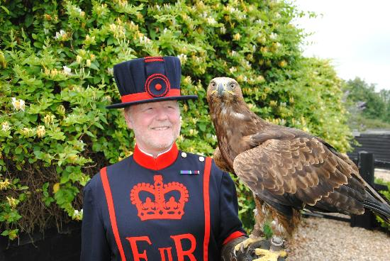 Yaraks Birds Of Prey Falconry Centre: Raven Master from the Tower of London with Khan our Golden Eagle x Russian Steppe Eagle