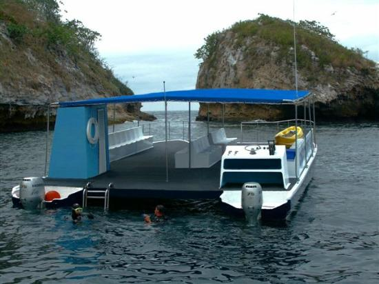 Chico 39 s dive shop puerto vallarta mexico top tips - Dive shop mexico ...
