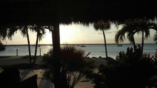 Hampton Inn Key Largo: Tiki Bar - Too bad it was closed!