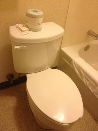 Red Roof Inn - Chattanooga Airport: Room 102 has a unique Dr. Frankenstein's toilet creature, seat/lid will not stay up