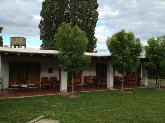 Posada Olivar: back patio
