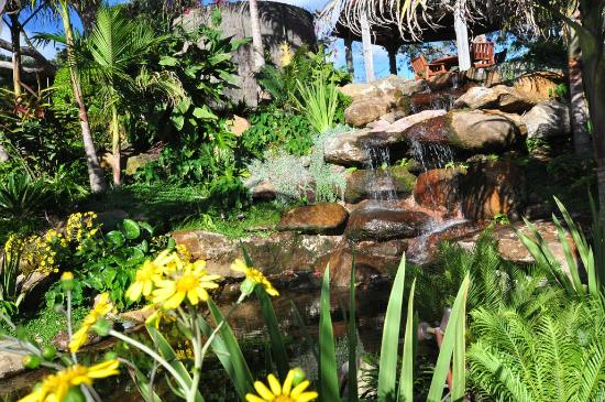 Sanctuary in the Cove: Spectacular garden waterfall