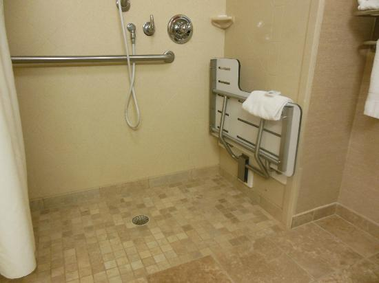 Hampton Inn South Kingstown - Newport Area: roll in shower, folding seat, hand held sprayer