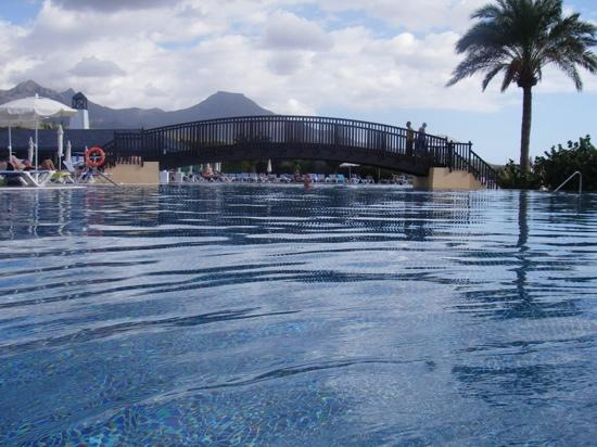 Bahia Principe Costa Adeje: it might be cold in November..but once in its a nice pool to swim in.