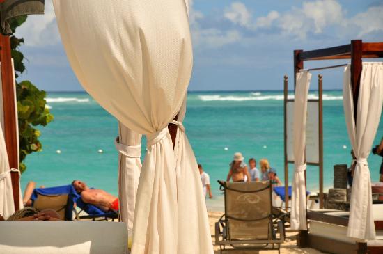 Grand Palladium Punta Cana Resort & Spa: beach