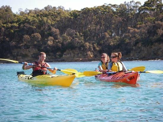 Bay and Beyond Sea Kayak Tours: Sea kayaking fun on Batemans Bay