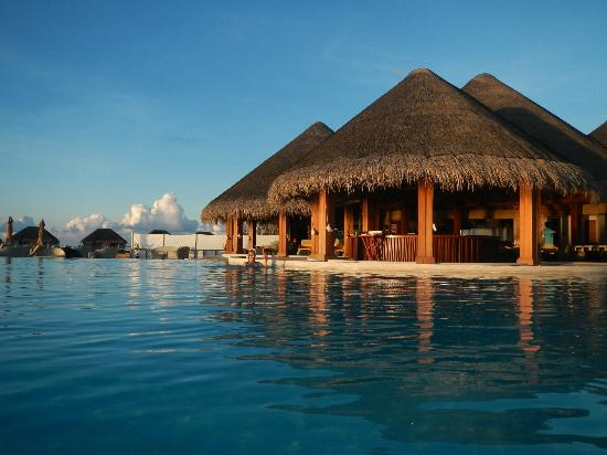 Dusit Thani Maldives: Pool & Bar