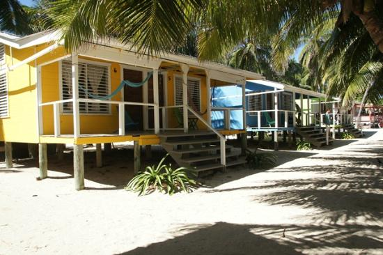 Tobacco Caye Lodge: Colorful cabanas with two beds, bathroom and porch with hammock