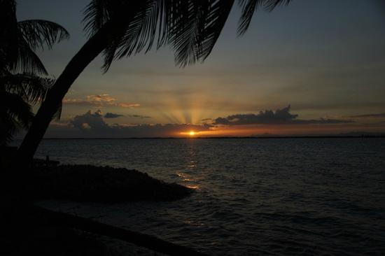 Tobacco Caye Lodge: Sunrise over the reef