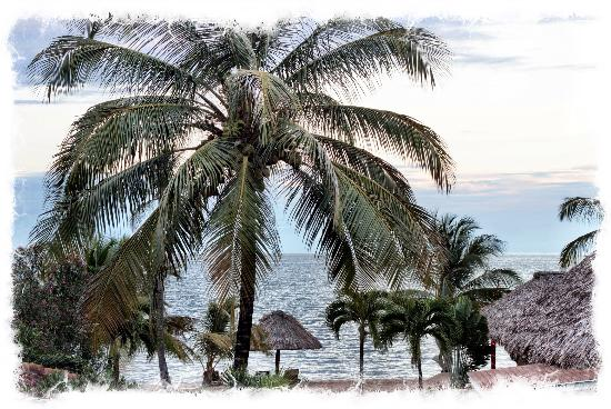 Belizean Dreams Resort: View from our balcony, single room...villa 6! We loved sitting outside in the morning sun drinki