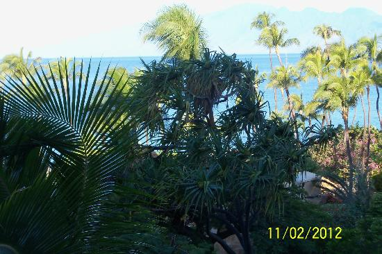 The Westin Maui Resort & Spa: First Room