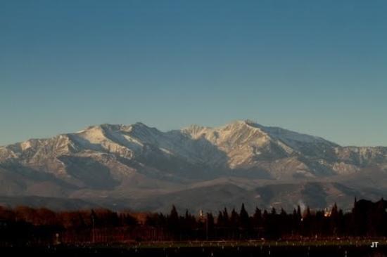 Calicéo : face au canigou , très belle montagne