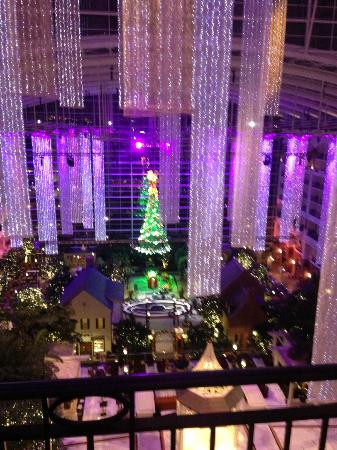 Gaylord National Resort & Convention Center: View from our 9th floor room!