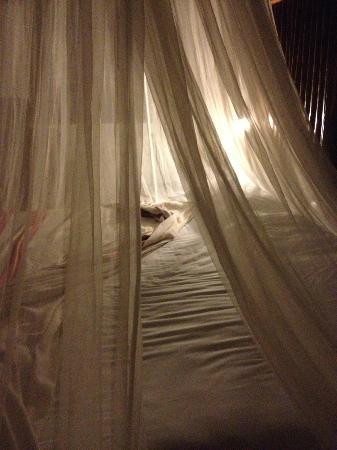 Tita Tulum Hotel Ecologico: My lovely nest
