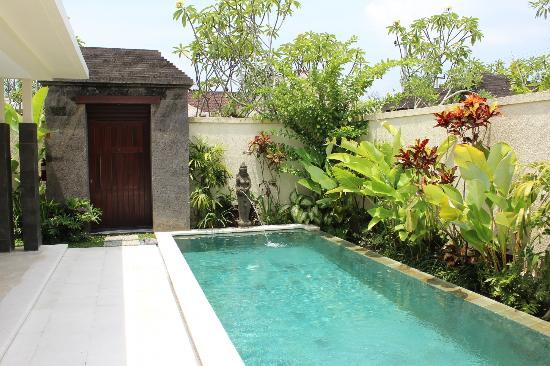 Mahagiri Villas: Our private pool