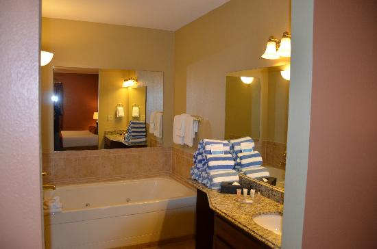 Wyndham Nashville: Master Bath