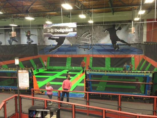 Elevated Sportz Indoor Trampoline Park: 3D Dodgeball