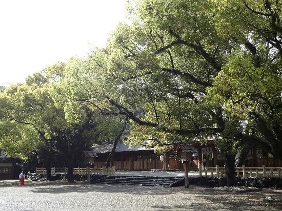 Nagoya, Japan: 巫女さんも