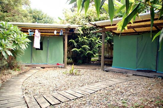 Nimbin Rox YHA: Beautiful Place to stay