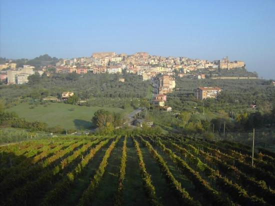 Agriturismo La Pietriccia: Chianciano
