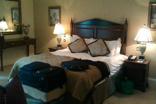 傳統溫泉度假酒店照片