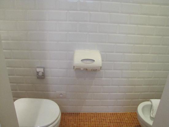 Die Swaene: bathroom
